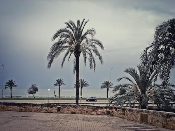 palma beach mediterranean